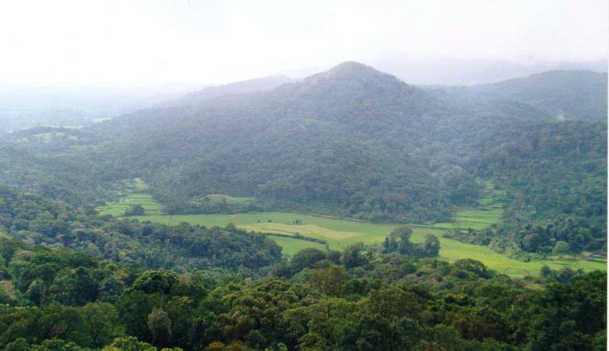 Bangalore – Mysore –Wayanad- Coorg